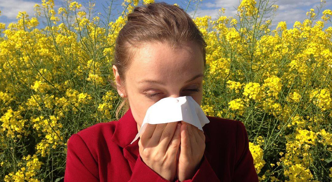 Četiri prirodna saveznika u borbi protiv alergija